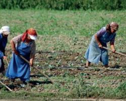 Българското земеделие